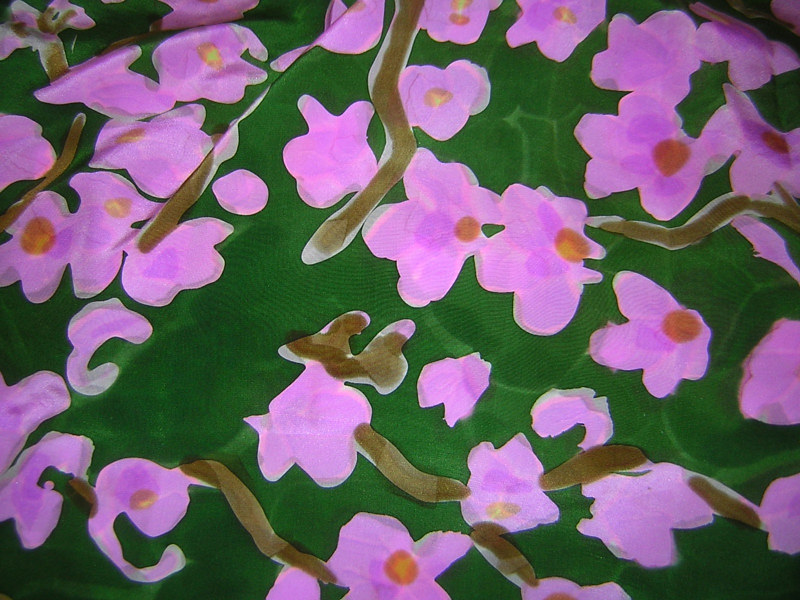 Orchids pfd by Michael Shyka