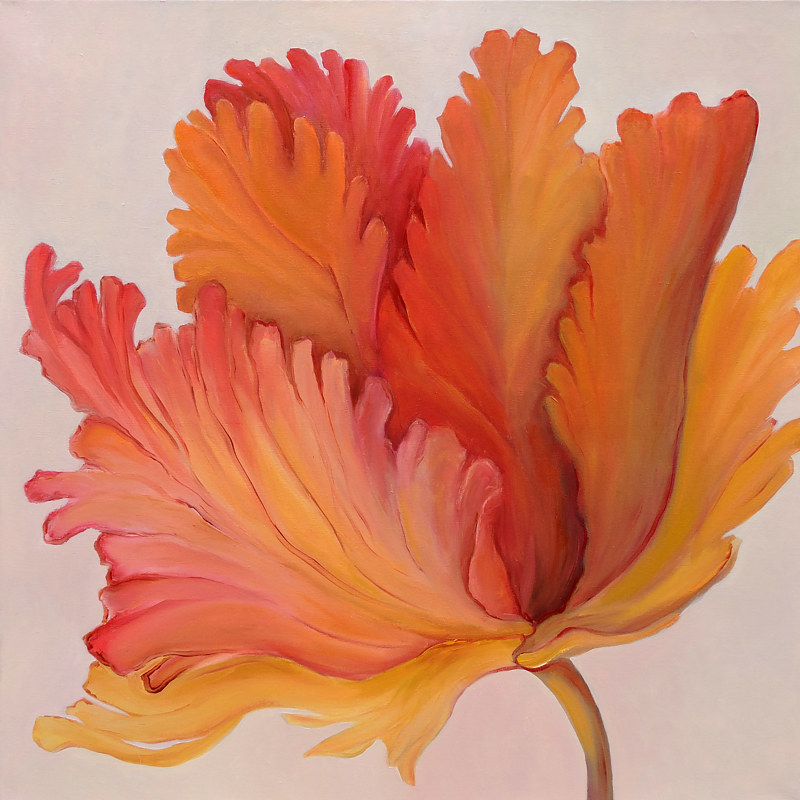 Painting Curly Tulip by Svetlana Barker
