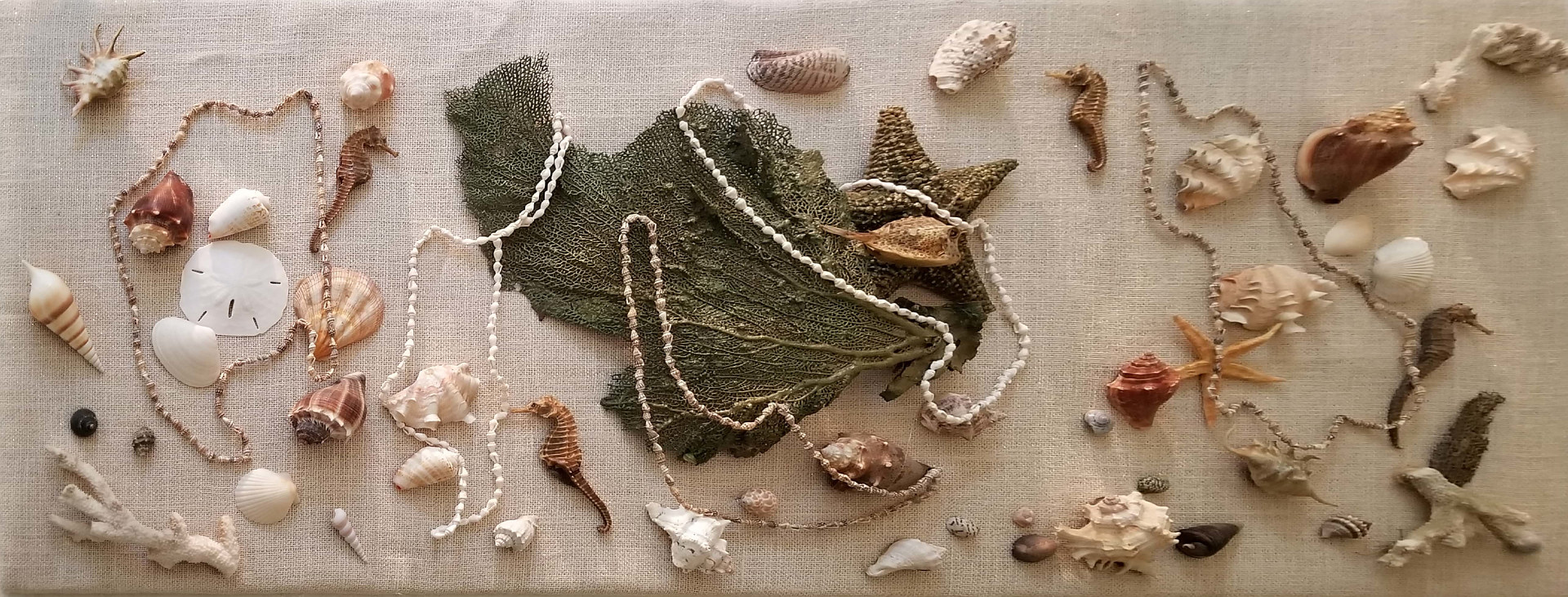 3D Seashell Collage by Jan Wirth