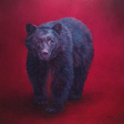 Oil painting All About the Bear by Diana Harris by Passionate Painters