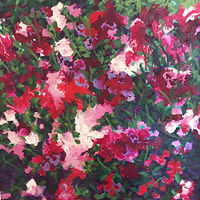 Acrylic painting Phlox by Diana Harris by Passionate Painters