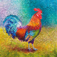 Acrylic painting Cock a Doodle Do by Diana Harris by Passionate Painters