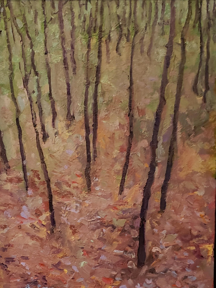 Painting A walk through Young Hemlocks  9x12 oil by Michael Gaudreau