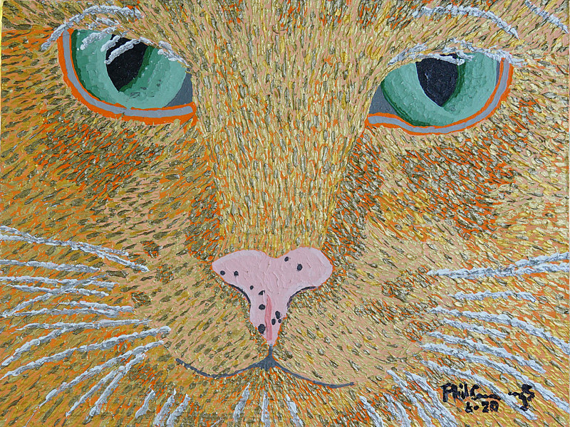 Acrylic painting Emily's cat Charley by Phil Cummings