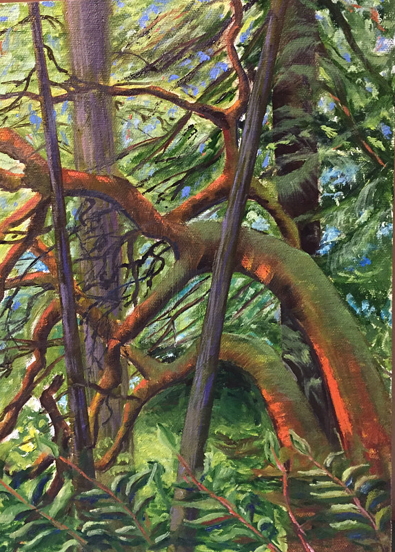 Oil painting Sun Dappled Arbutus by Jeanne Urban by Passionate Painters