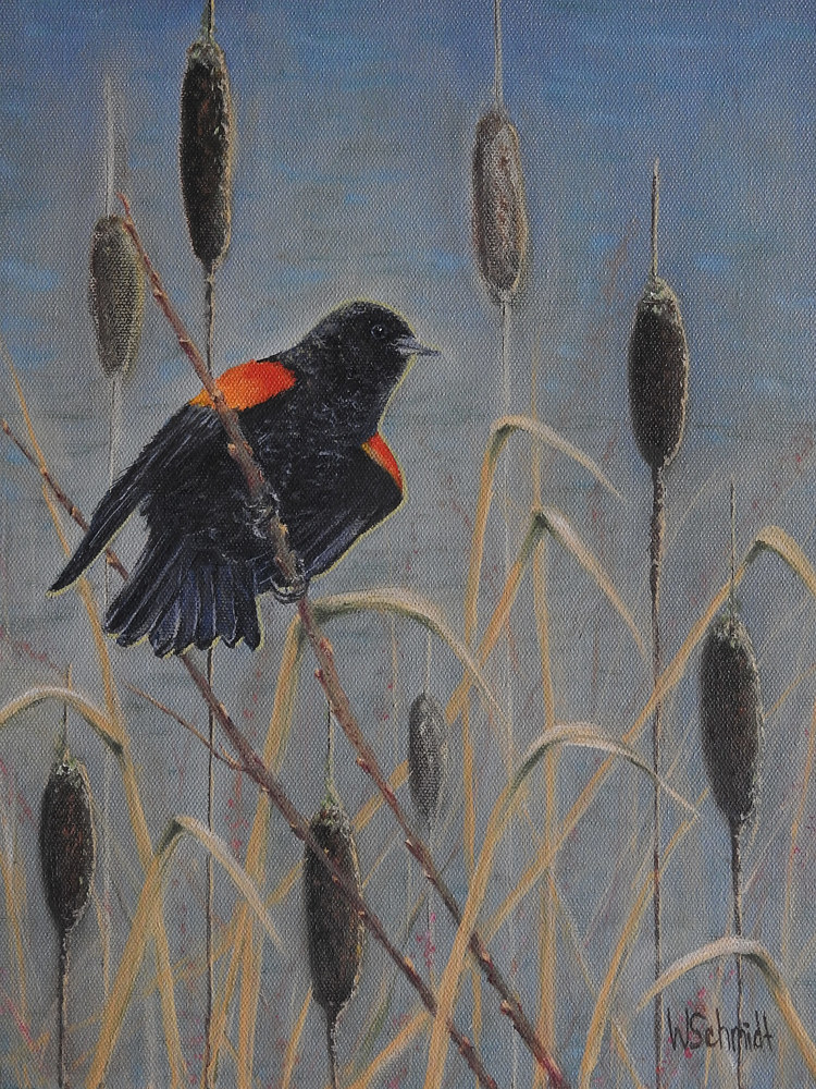 A Blackbird's View by Vicki Allesia
