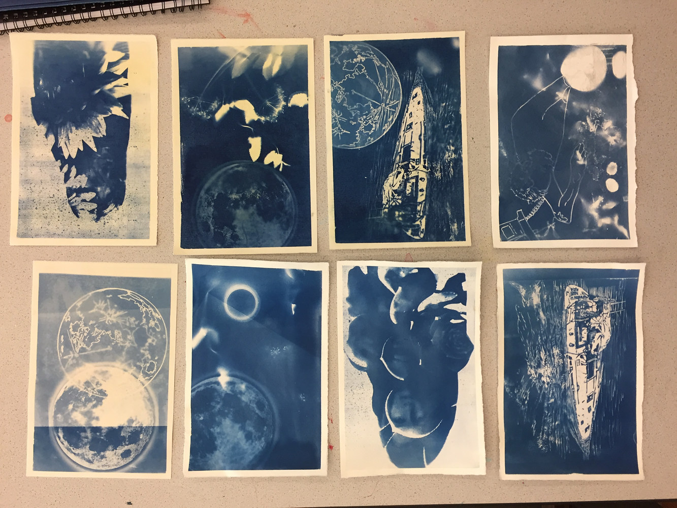 Cyanotype Tests by Amber Macgregor