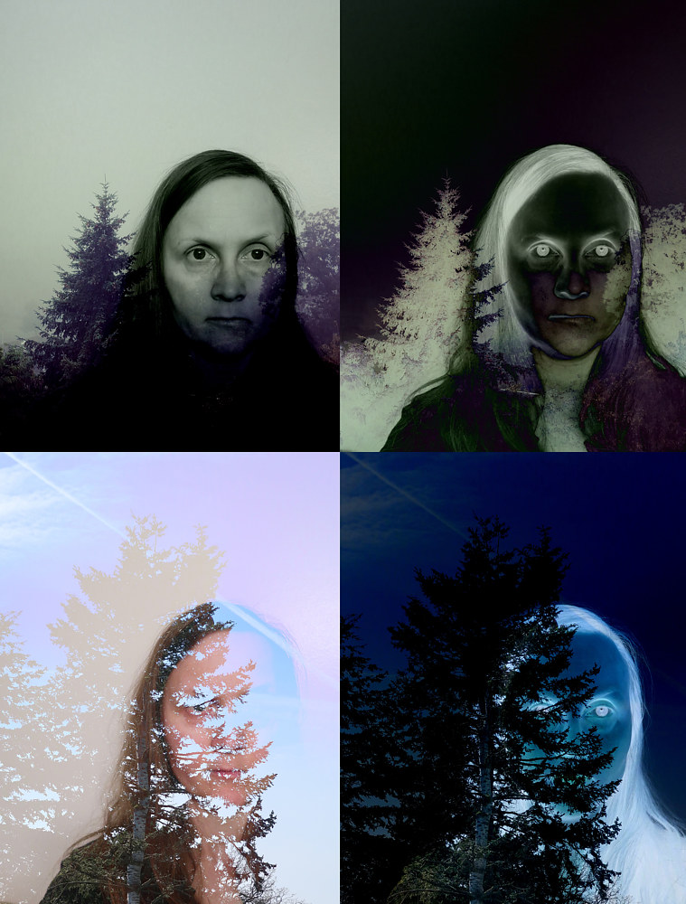 Photography In the Trees 1a, 1b, 2a, 2b by Amber Macgregor