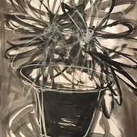 Acrylic painting Starburst: Flower in Black and White II by Sarah Trundle