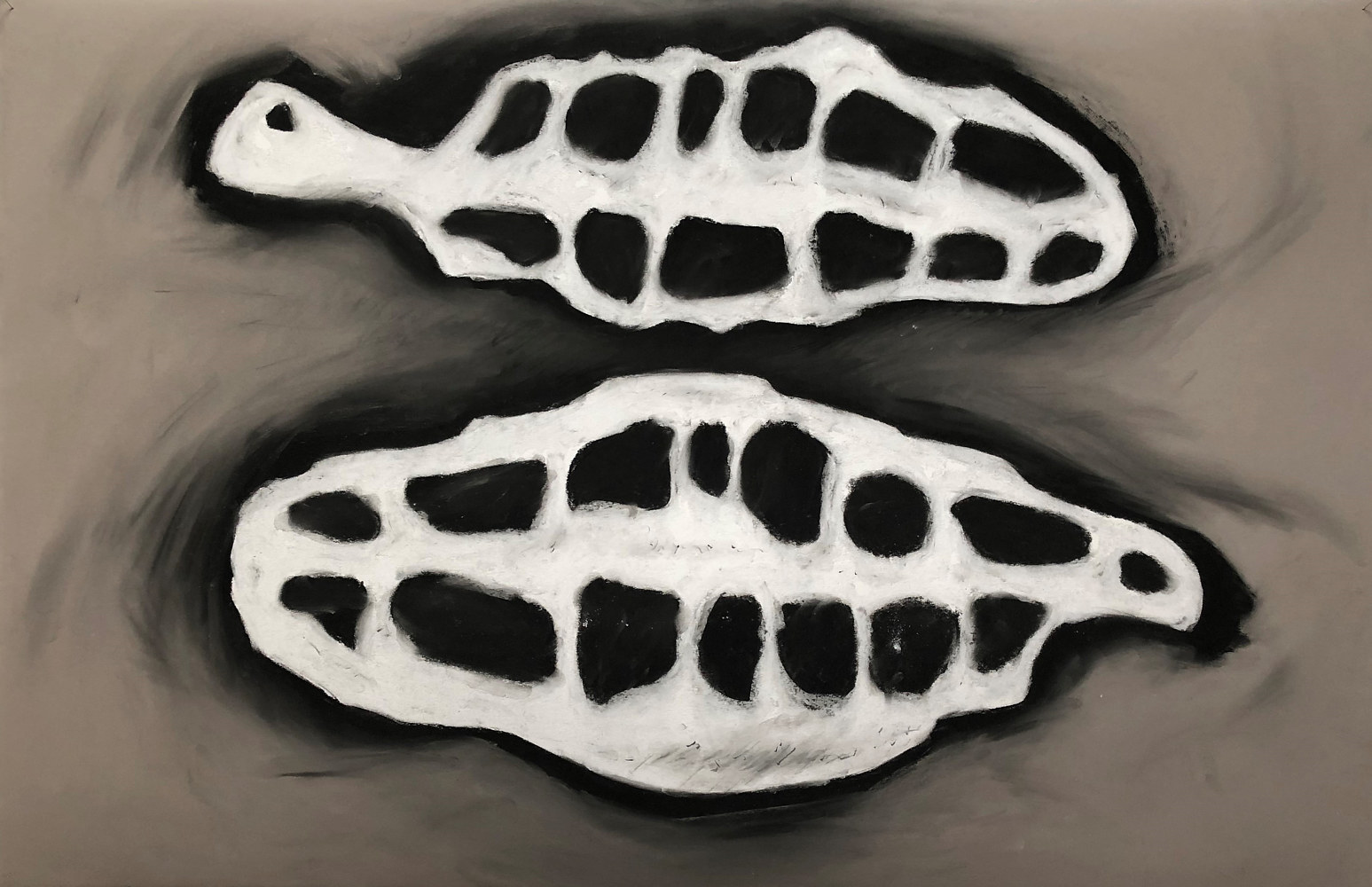 Drawing Dorsal Papillae 6 by Pamela  Speight