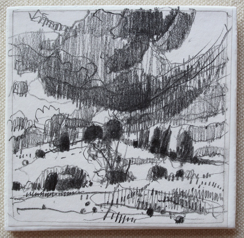 Drawing Secret Field, August 5 by Harry Stooshinoff