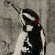 Print Drumming Woodpecker by Nicole Walters