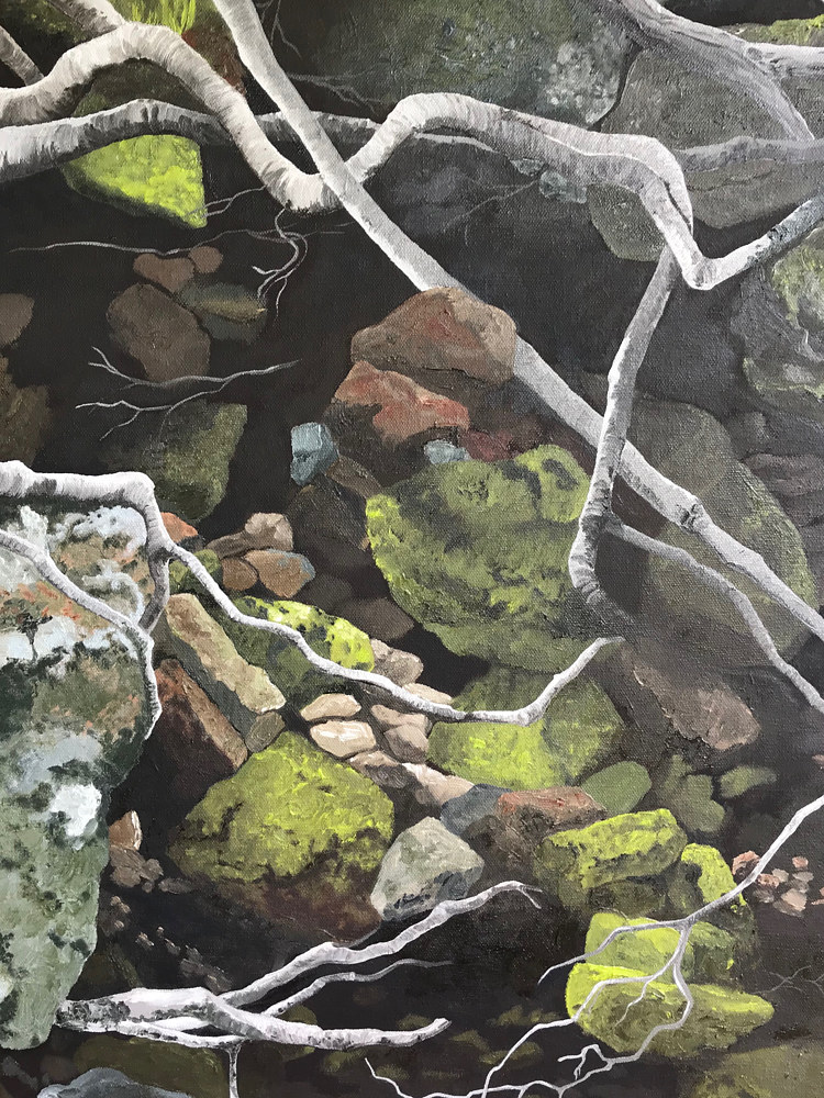 Detail: Step Creek at Gum Branch. by Jayne Crawford