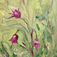 Oil painting Three-flowered Avens  by Edie Marshall