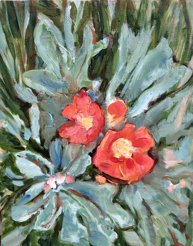 Oil painting Scarlet Mallow by Edie Marshall