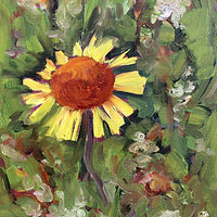 Oil painting Gailardia: AKA Brown Eyed Susan  by Edie Marshall