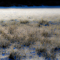 """Frozen Field, Sunrise"" by Hunter Madsen"