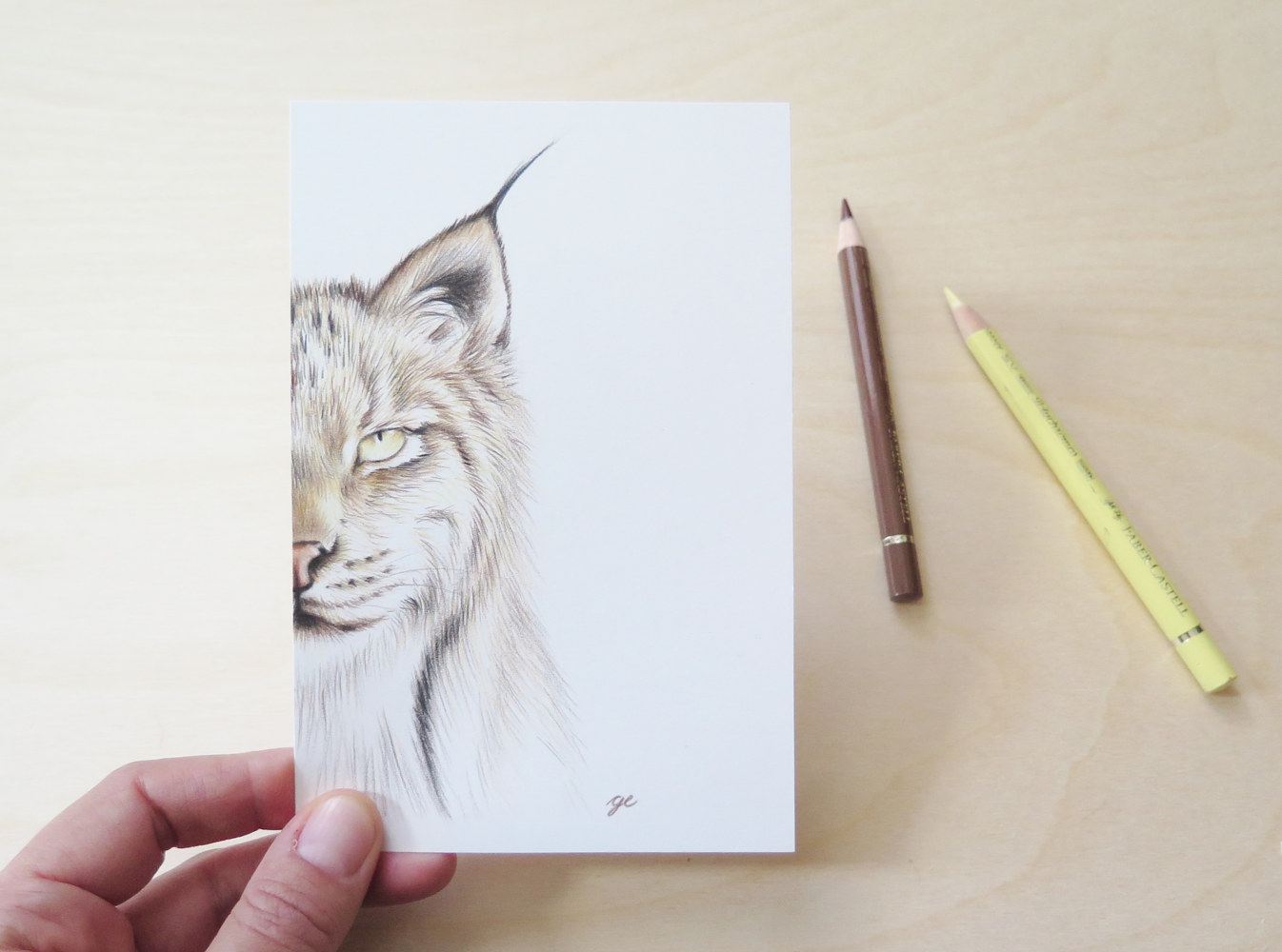 Drawing Dessin original 4x6 - Lynx by Genevieve Desy