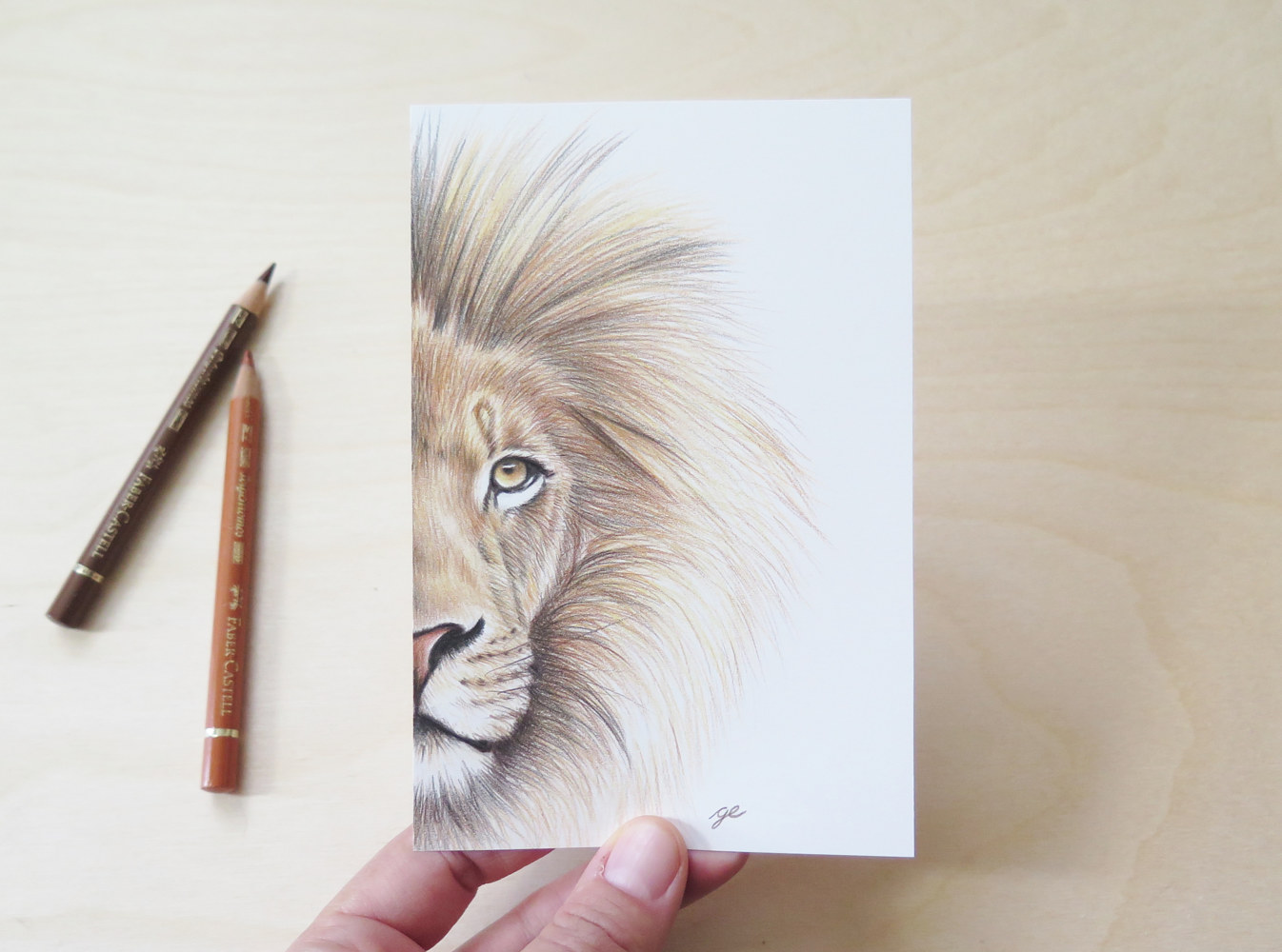 Drawing Dessin original 4x6 - Lion by Genevieve Desy