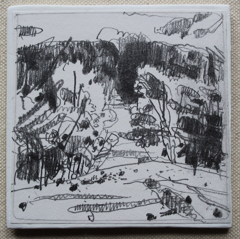 Drawing From Thom's Mountain  by Harry Stooshinoff