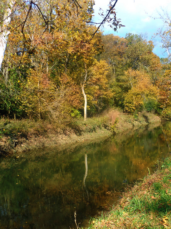 Print East Hickman Creek by David Neace