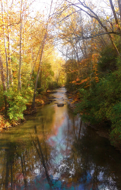 Print Autumn Afternoon by David Neace