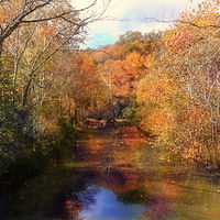 Print Grier Creek Fall by David Neace