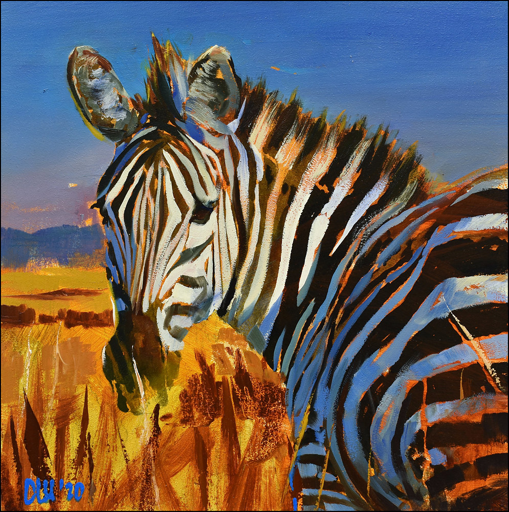 Zebra by Angelo Mariano