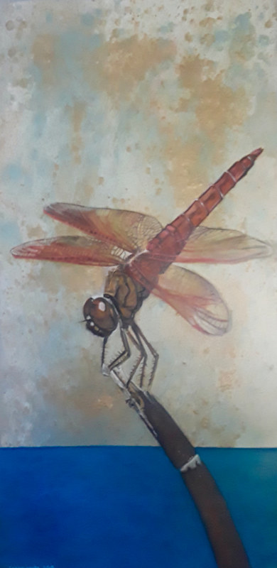 Oil painting dragon fly by Timothy Innamorato
