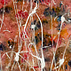 Acrylic painting Fire field | Feu des champs by Nathalie Gribinski
