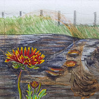 Watercolor Daisy on the Beach by Sarah Peschell