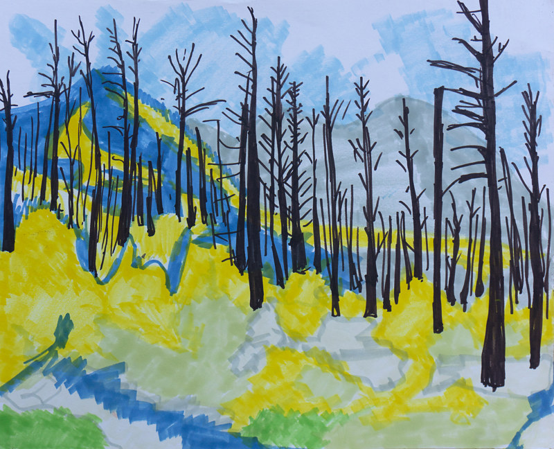 Drawing Burnt Forest (markers) by Crystal Dipietro