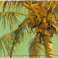Print FEBRUARY FANTASY a print of a palm from Key West in 2004 by Reed Dixon