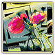 012a-Pink Poppy Puzzle  print by Michel Bourquard