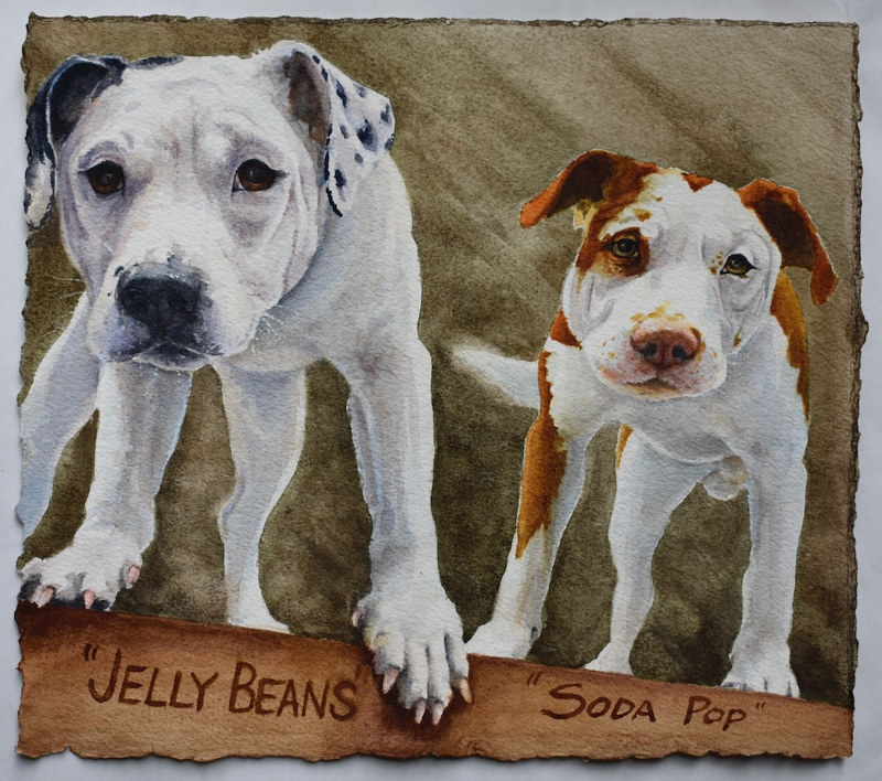 Watercolor Jelly Beans & Soda Pop by Lisa  Baechtle