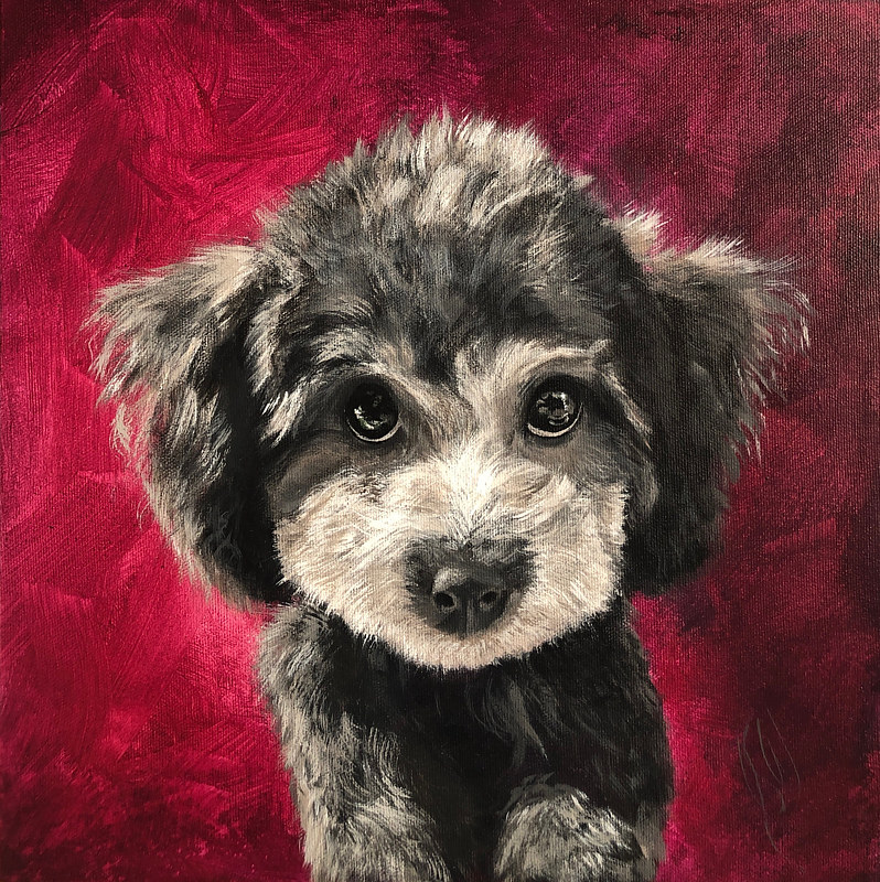 "Acrylic painting ""TEDDY""  by Jacqueline S Warkentin by Passionate Painters"