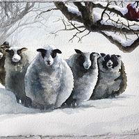 Watercolor Stasia's Sheep by Lisa  Baechtle