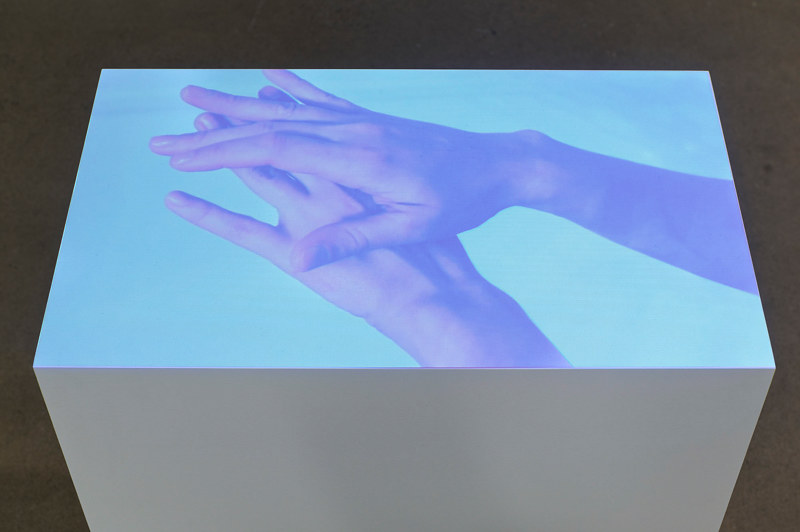 Photography Hands, 2011 by Tanya  Lukin-linklater
