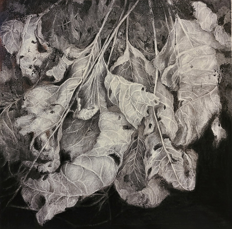 Drawing Trembling Leaves by Libuse Labik