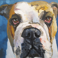 Oil painting Marina's Dog by Cody Blomberg