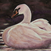 Watercolor Sunset Swan by Yvonne Shaffer