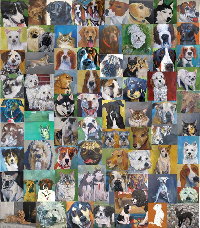 All my dog portraits! by Cody Blomberg