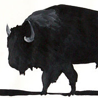 """Bison"" 2006. Acrylic on paper. 72 x 100 cm by Belinda Harrow"