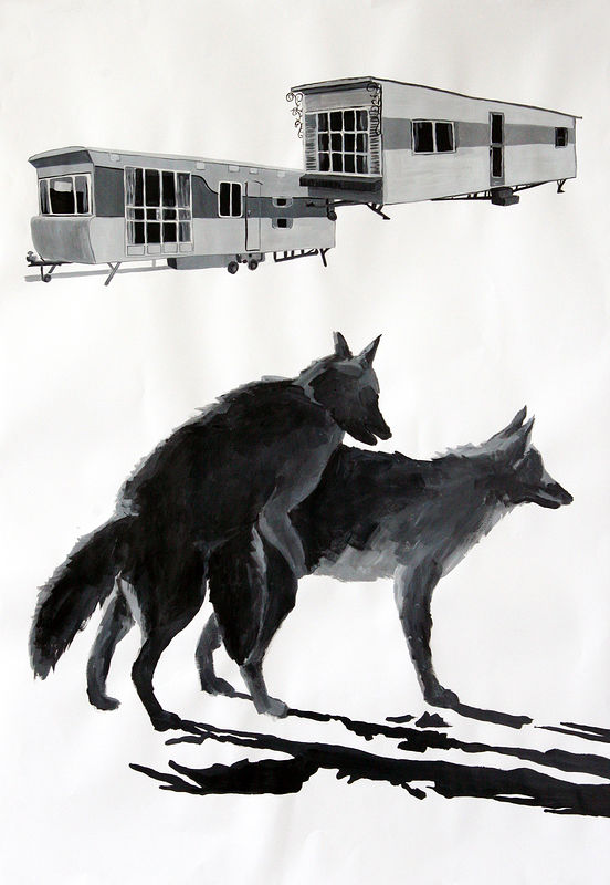 """Coyotes"" 2006. Acrylic on paper. 72 x 100 cm by Belinda Harrow"