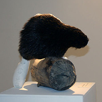"""The Beaver and Trade Routes"" 2011. Cotton, beaver fur, graphite and wood. 60 x 55 x 40 cm by Belinda Harrow"