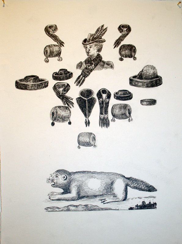 """European Beaver and Wraps"". Graphite on paper. 29 x 38 cm. 2011   by Belinda Harrow"