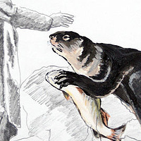 """Sir Alexander Mackenzie and Otter"".  Graphite and acrylic on paper. 29 x 38 cm. 2011  by Belinda Harrow"