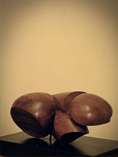 Penetration, Walnut - 17 x 9 x 8 inches by Larry Scaturro