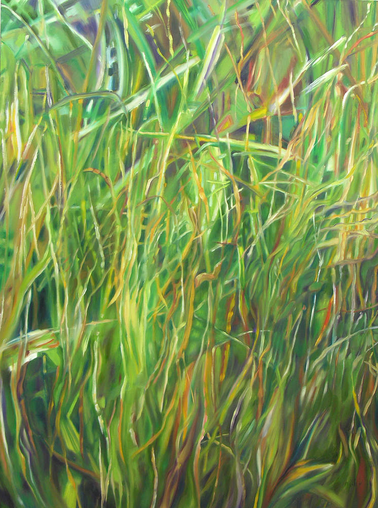 Perinial Grass 36x48 by Micky Renders