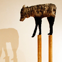 """Timberwolf IV"" 2008. Cotton, charcoal, batting and douglas fir. 260 x 120 x 120 cm by Belinda Harrow"